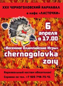 Афиша карнавала 2014.